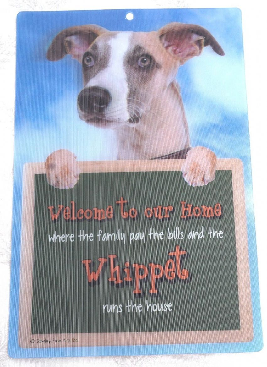 WHIPPET 3D WELCOME SIGN STUNNING EYE CATCHING 23CM X 15CM DURABLE DOG SIGN